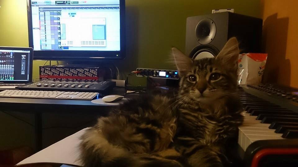 Il semblerait qu'un chat aide à composer la musique ^^